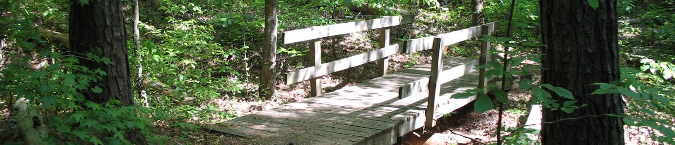 banner_trail3